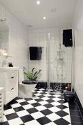interjeras_vonia, tualetas (6)